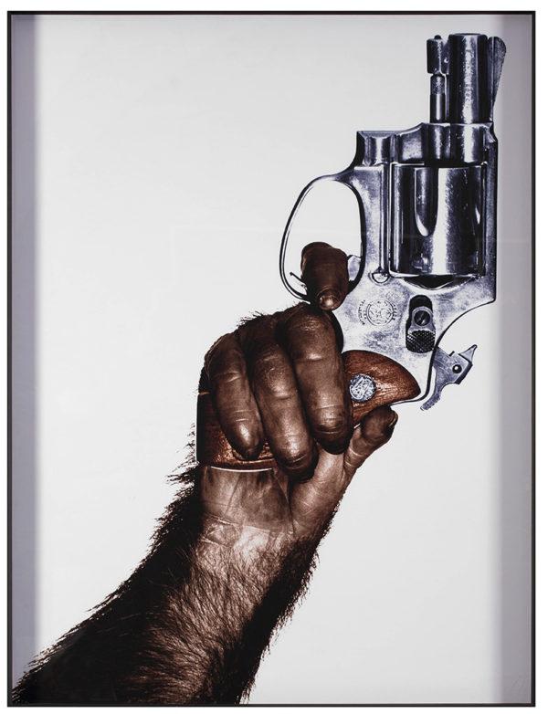 Watson, Monkey With Gun